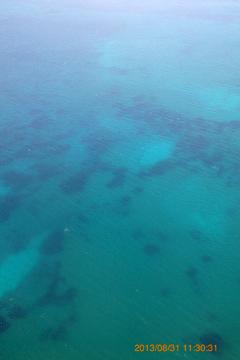機内から海中が見える!