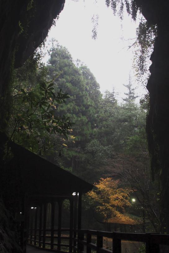 秋芳洞-164-7