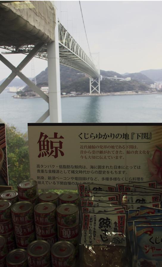 関門大橋-213-1