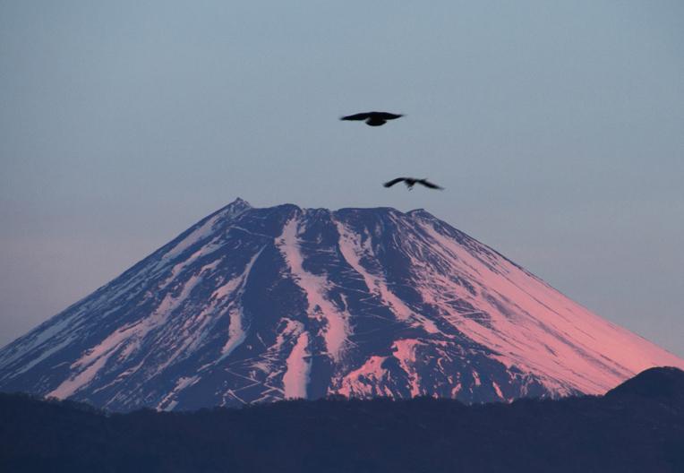 25日 6ー56 今朝の富士山-3