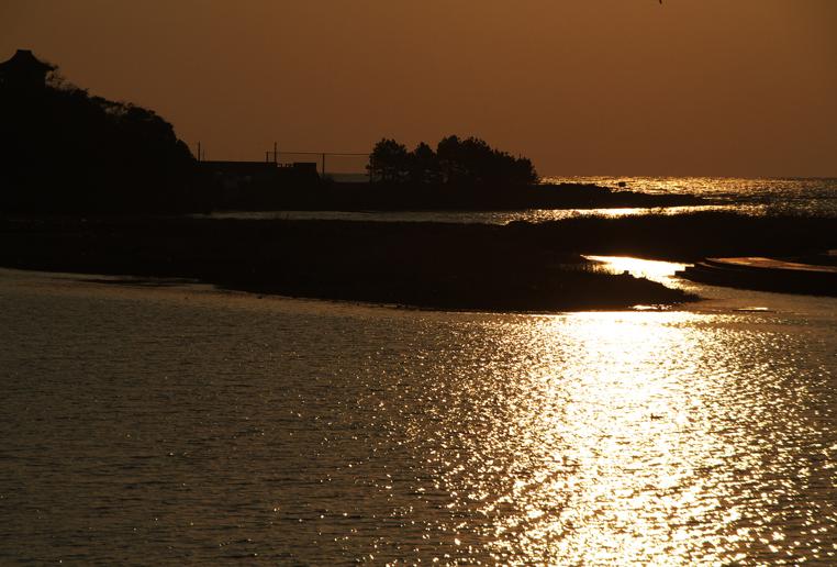 狩野川の夕陽-455-1