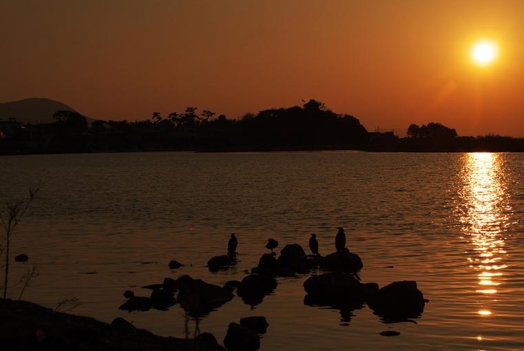 狩野川の夕陽-476-3