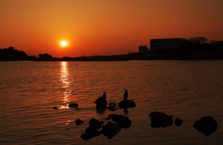 狩野川の夕陽-490-2