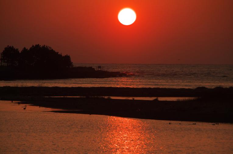 狩野川の夕陽-501-1