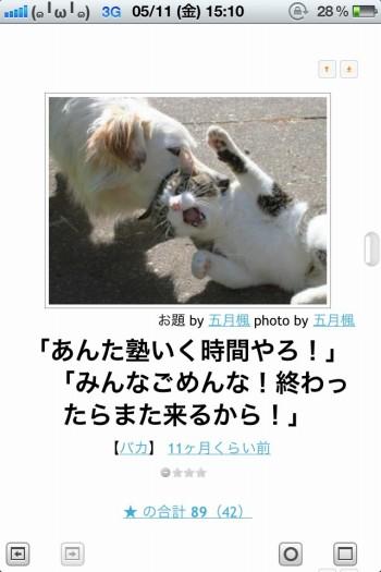 1_2_ks_20120511205647.jpg