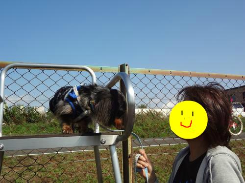 snap_chapuco_201212023927.jpg