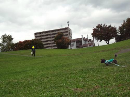 snap_chapuco_2012121223029.jpg