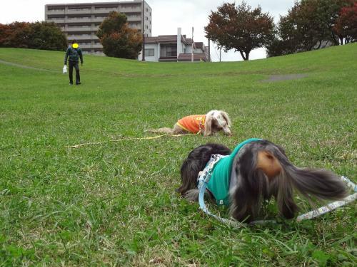 snap_chapuco_201212122356.jpg
