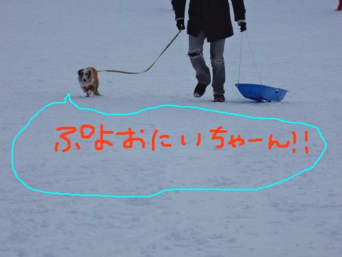 snap_chapuco_201224204528.jpg