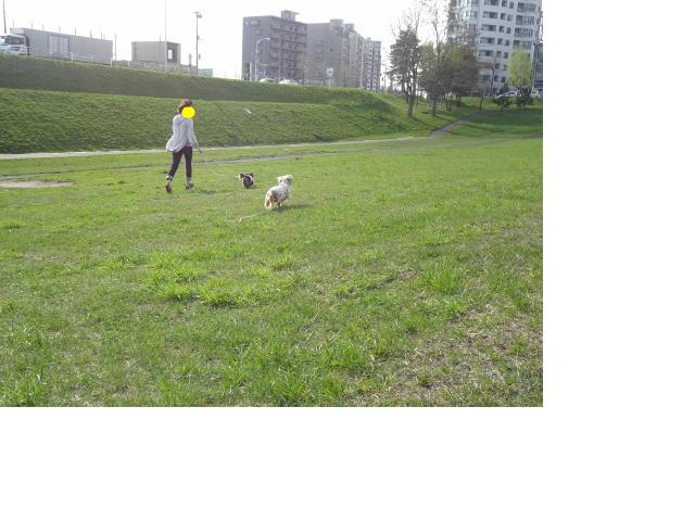 snap_chapuco_201256104759.jpg