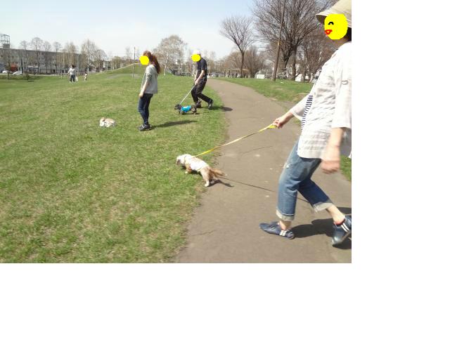 snap_chapuco_20125617232.jpg
