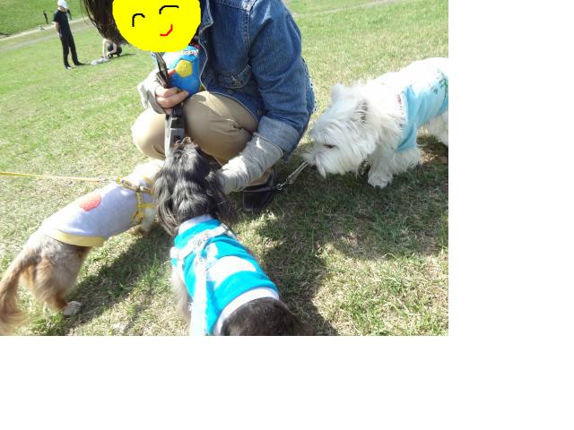 snap_chapuco_201256173849.jpg
