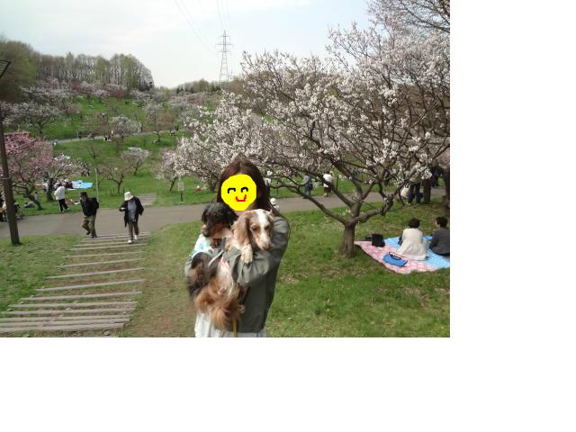 snap_chapuco_201256221853.jpg