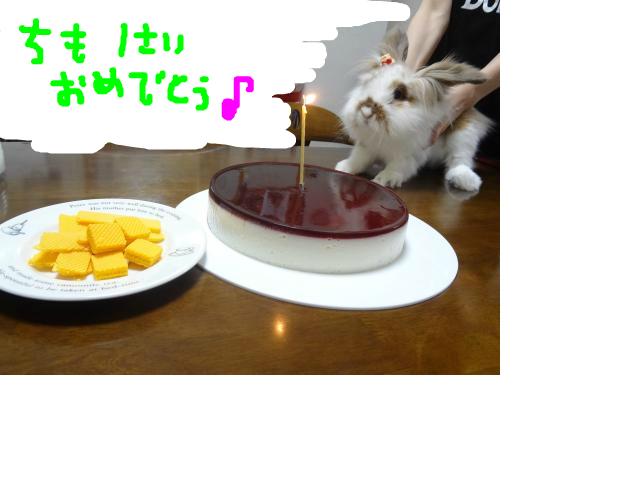 snap_chapuco_20126013489.jpg