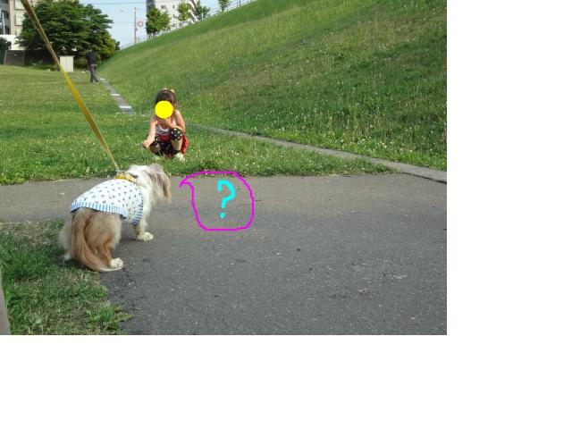 snap_chapuco_201272212442.jpg