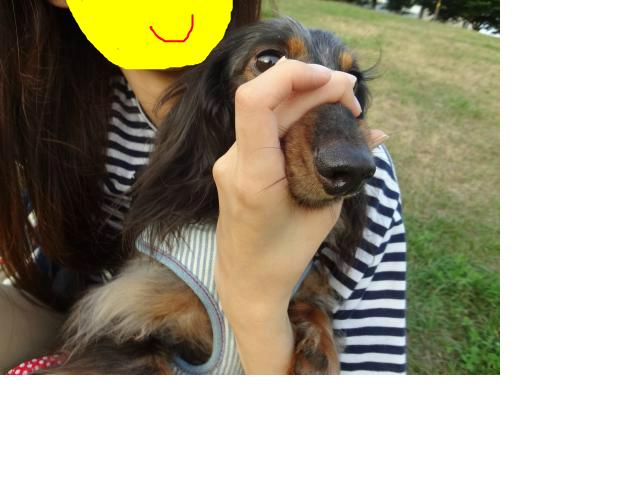 snap_chapuco_201282215329.jpg