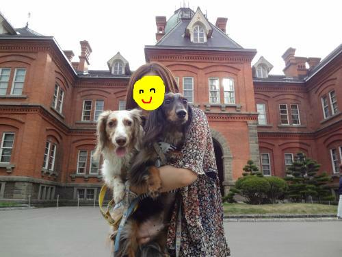 snap_chapuco_201283205550.jpg