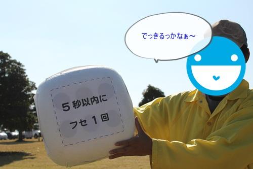 DSC00670_20121120211650.jpg