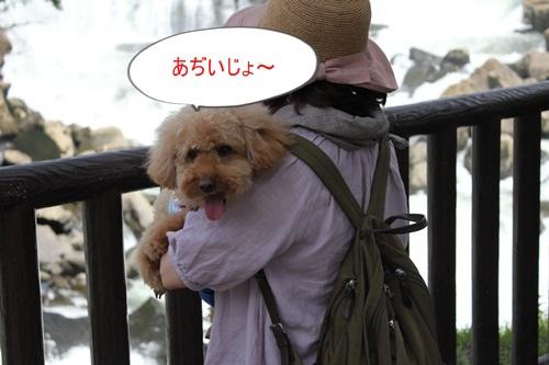 IMG_6714.jpg