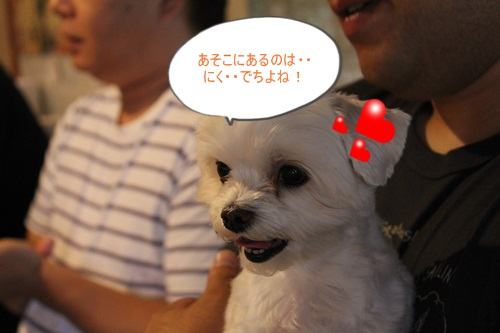 IMG_7043_20120726211115.jpg