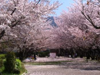 fc2blog_201204131011244e4.jpg