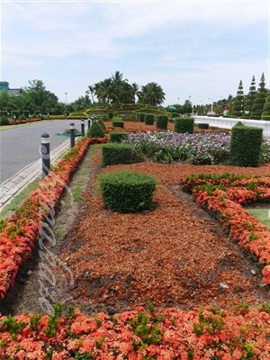 チェンマイ花博記念公園 ロイヤルフローラ・ラチャプルック