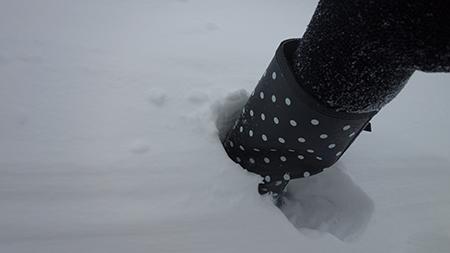 2014雪5
