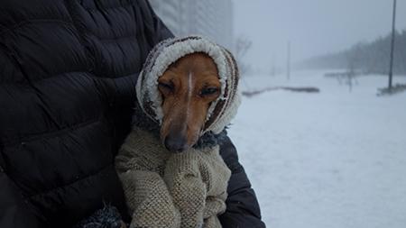 2014雪6