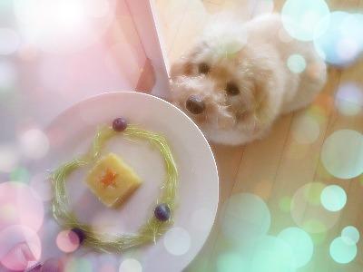 PhotoFunia-6588e0_o.jpg