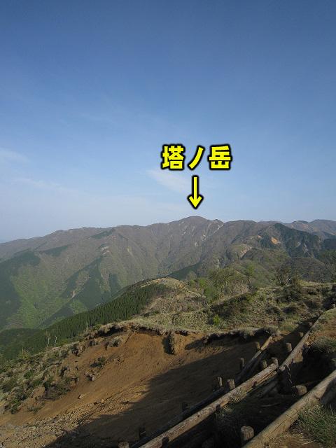 遠くに塔ノ岳