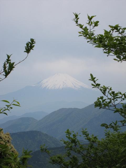二ノ塔から見た富士山