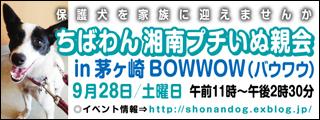 chigasaki8_320x120.jpg