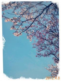 aq_20120409174211.jpg