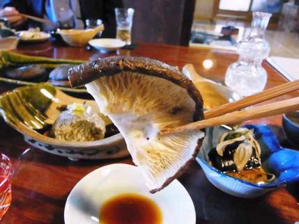 12-10-24-石 椎茸たべ