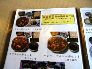12-11-11 品カレー丼