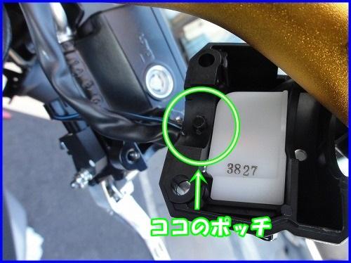 DSC09314.jpg