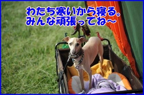 DSC_0062_201309262205153ef.jpg