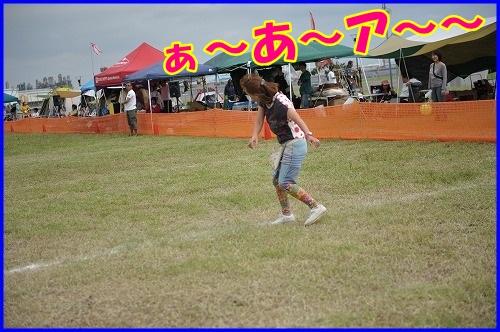 DSC_0132_2013092622063515a.jpg