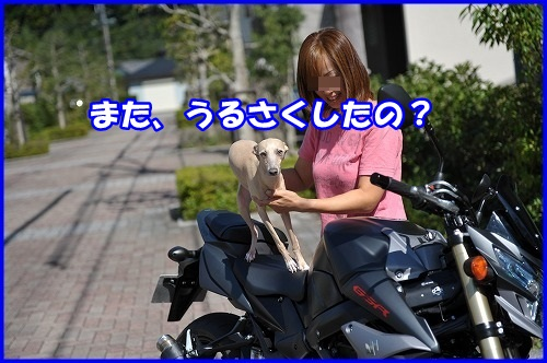 DSC_0340_20130930232130099.jpg