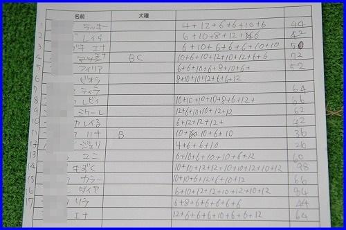 DSC_0529_201310202113368ac.jpg
