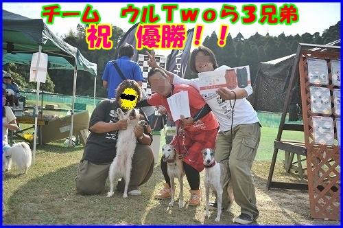 DSC_0763_201310202120312f2.jpg