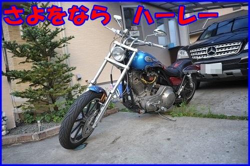 DSC_9839_201308262256491c2.jpg