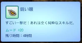 TS3W-2013-06-03-15-37-31-44.jpg