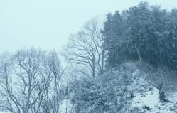 悲しむように雪が降る