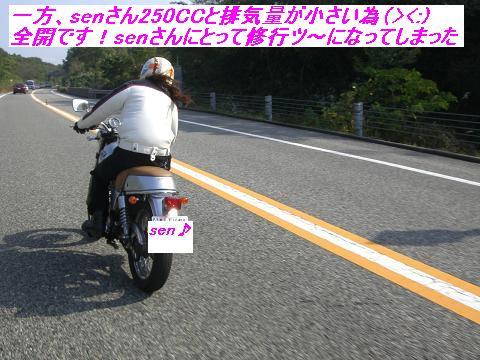 CIMG1978.jpg