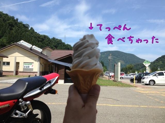 IMG_3569zzz.jpg