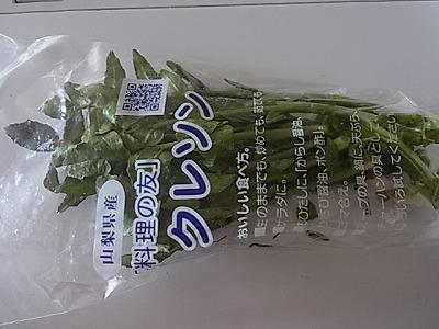 shukusho-RIMG1815.jpg