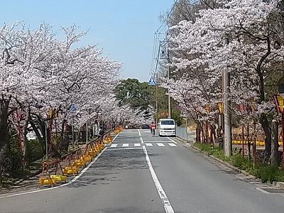 shukusho-RIMG2065.jpg