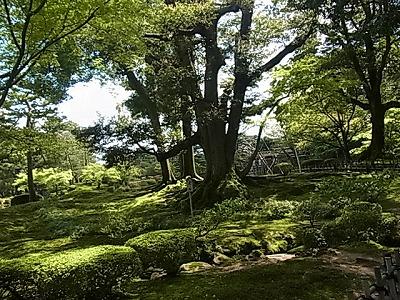 shukusho-RIMG2268.jpg