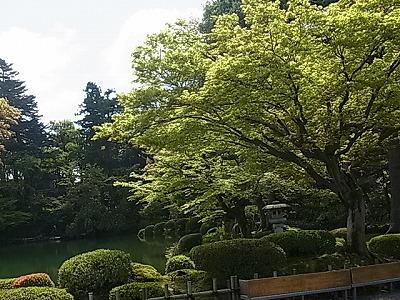 shukusho-RIMG2272.jpg